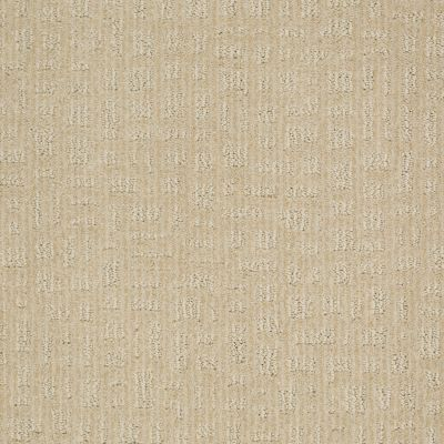 Shaw Floors Shaw Flooring Gallery Set The Stage Linen 00101_5515G