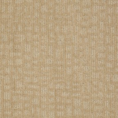 Shaw Floors Shaw Flooring Gallery Set The Stage Field Stone 00105_5515G