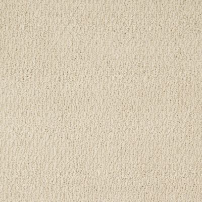 Shaw Floors Shaw Flooring Gallery Snap To It Winter White 00100_5516G