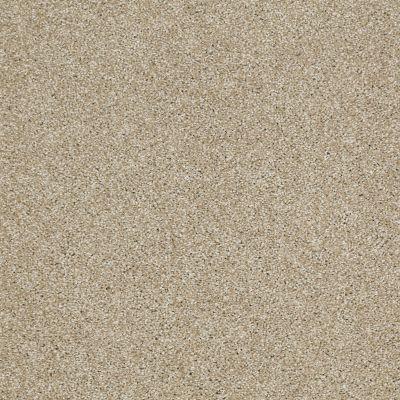 Shaw Floors Shaw Flooring Gallery Canvas Wool Skein 00111_5518G