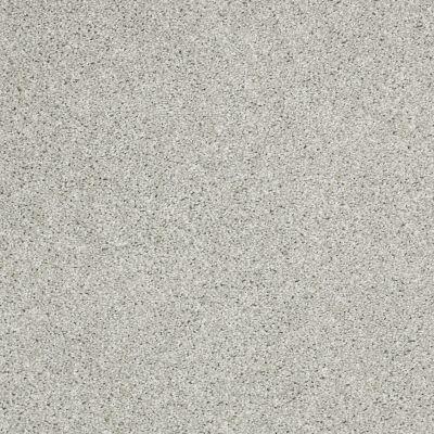 Shaw Floors Shaw Flooring Gallery Canvas Sea Salt 00512_5518G