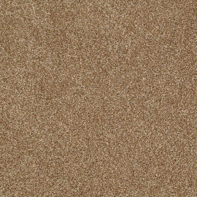 Shaw Floors Shaw Flooring Gallery Canvas Leather Bound 00702_5518G