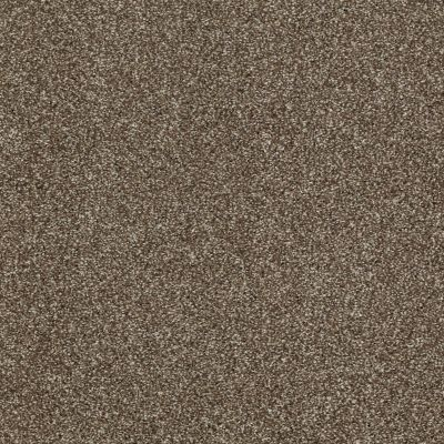 Shaw Floors Shaw Flooring Gallery Canvas Townhouse 00704_5518G