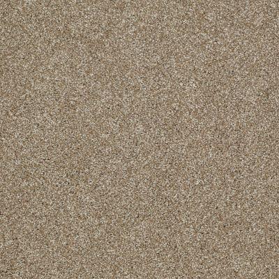 Shaw Floors Shaw Flooring Gallery Canvas Prairie 00710_5518G