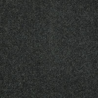 Shaw Floors Shaw Flooring Gallery Mcentire Emerald 00320_5520G