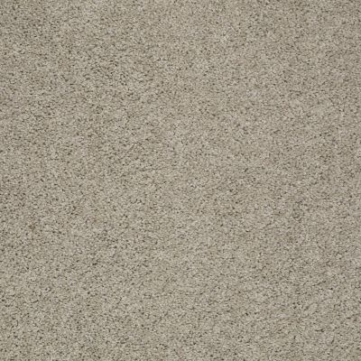 Shaw Floors Shaw Flooring Gallery Mcentire Seattle Mist 00520_5520G