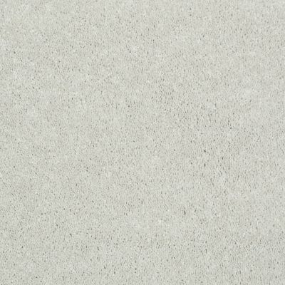 Shaw Floors Shaw Flooring Gallery Challenge Accepted I 12′ Ecru 00103_5522G