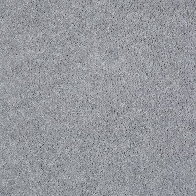 Shaw Floors Shaw Flooring Gallery Challenge Accepted I 12′ Nickel 00502_5522G