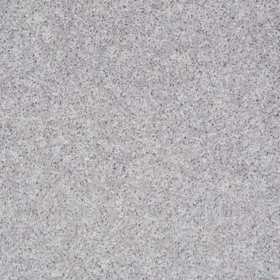 Shaw Floors Shaw Flooring Gallery In The Zone (s) Silver Spoon 00510_5525G
