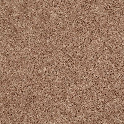 Shaw Floors Shaw Flooring Gallery In The Zone (s) Mocha Mist 00730_5525G