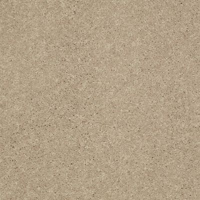 Shaw Floors Shaw Flooring Gallery Challenge Accepted II 15′ Almond Bark 00106_5528G