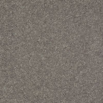 Shaw Floors Shaw Flooring Gallery Challenge Accepted II 15′ Thunder 00503_5528G