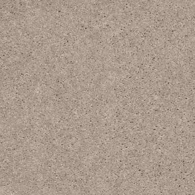 Shaw Floors Shaw Flooring Gallery Challenge Accepted II 15′ Natural Beige 00700_5528G
