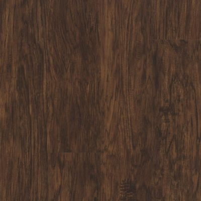 Philadelphia Commercial Vinyl Residential Transcend Well-bred Brown 00634_5529V
