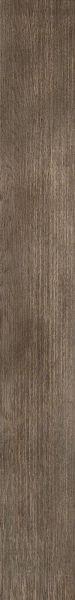 Philadelphia Commercial Vinyl Residential Sustain 12 Mil Elmwood 00170_5534V