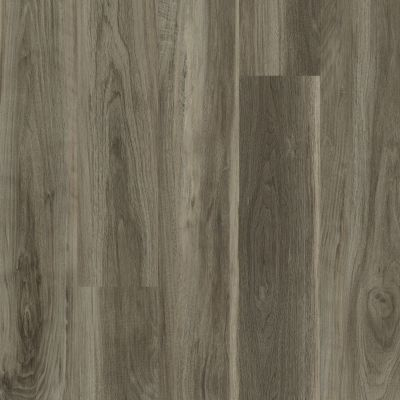 Philadelphia Commercial Vinyl Residential In The Grain II 30 Flaxseed 00568_5536V
