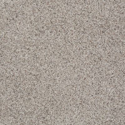 Shaw Floors Shaw Flooring Gallery Very Comfortable II Pebble Path 00172_5556G