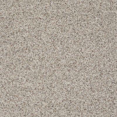 Shaw Floors Shaw Flooring Gallery Very Comfortable III Sun Bleached 00171_5557G