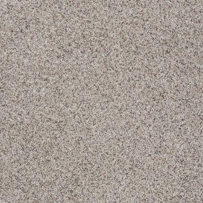 Shaw Floors Shaw Flooring Gallery Very Comfortable III Pebble Path 00172_5557G