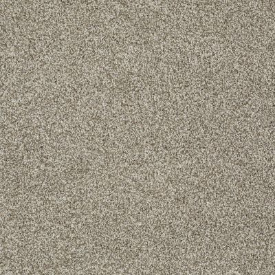 Shaw Floors Shaw Flooring Gallery You Found Me Smooth Slate 00704_5558G