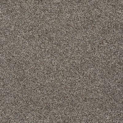 Shaw Floors Shaw Flooring Gallery You Found Me Flax 00751_5558G