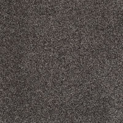 Shaw Floors Shaw Flooring Gallery You Found Me Vintage Leather 00755_5558G