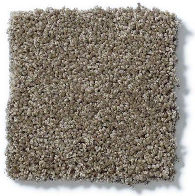 Shaw Floors Inspired By III Flax 00751_5562G