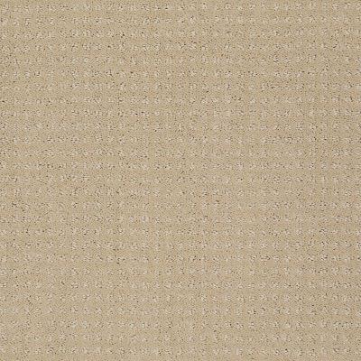 Shaw Floors Shaw Flooring Gallery Inspired By Pattern Taffeta 00107_5563G