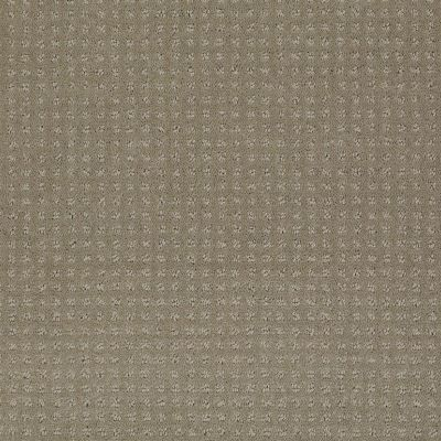 Shaw Floors Shaw Flooring Gallery Inspired By Pattern Smooth Slate 00704_5563G