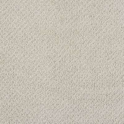 Shaw Floors Shaw Flooring Gallery Subtle Shimmer Loop Natural 00153_5568G