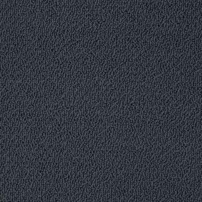 Shaw Floors Shaw Flooring Gallery Subtle Shimmer Loop Patchwork 00401_5568G