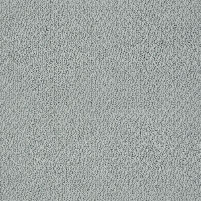 Shaw Floors Shaw Flooring Gallery Subtle Shimmer Loop Stained Glass 00452_5568G
