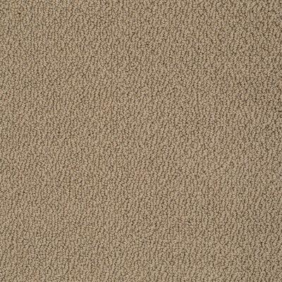 Shaw Floors Shaw Flooring Gallery Subtle Shimmer Loop Saffron 00757_5568G