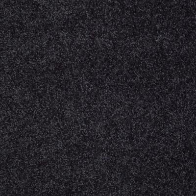Shaw Floors Shaw Flooring Gallery Lucky You Stunning Navy 00401_5574G