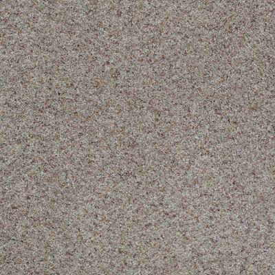 Shaw Floors Shaw Flooring Gallery Lucky You Birch Bark 00550_5574G
