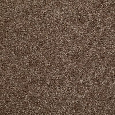 Shaw Floors Shaw Flooring Gallery Why Not Me Brushed Suede 00702_5581G