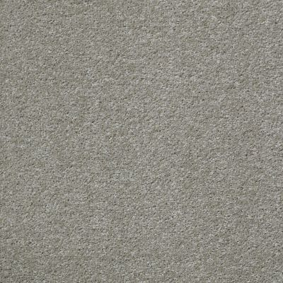 Shaw Floors Shaw Flooring Gallery Why Not Me Smooth Taupe 00712_5581G