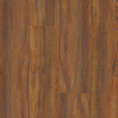 Philadelphia Commercial Resilient Commercial Fortitude Auburn Oak 00698_5601V