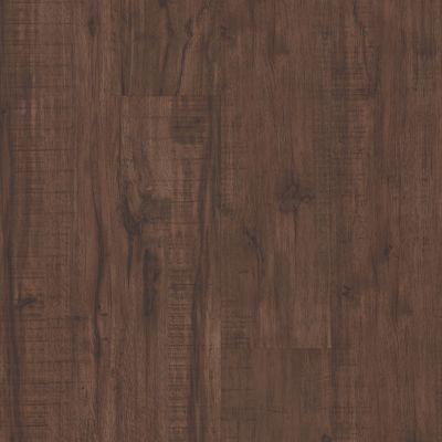 Philadelphia Commercial Resilient Commercial Fortitude Umber Oak 00734_5601V