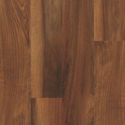 Philadelphia Commercial Resilient Commercial Fortitude Amber Oak 00820_5601V
