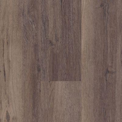 Philadelphia Commercial Resilient Commercial Zenith Dividit 00795_5617V