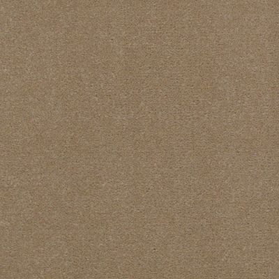 Shaw Contract No Collection Design Sr V 36 Twill 32110_5A033