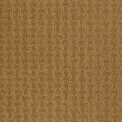 Shaw Floors Shaw Design Center Towne Crest Golden Wheat 00201_5C552