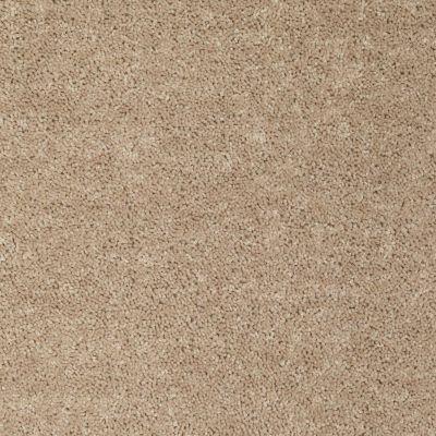 Shaw Floors Shaw Design Center Larimore 12′ Wild Dune 00201_5C577