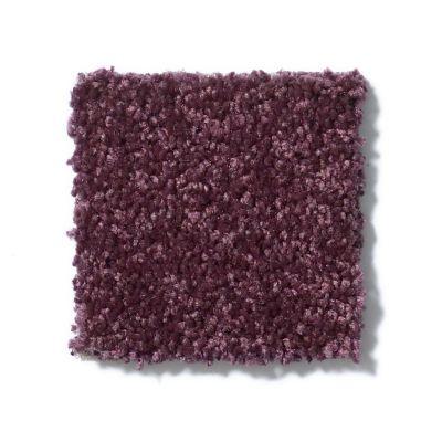 Shaw Floors Shaw Design Center Larimore 12′ Royal Purple 00902_5C577