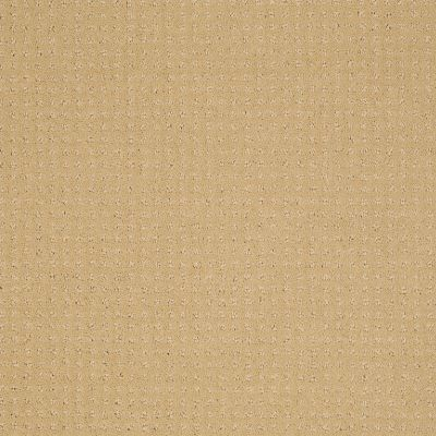 Shaw Floors Shaw Design Center Warm Welcome Butter Cream 00200_5C587