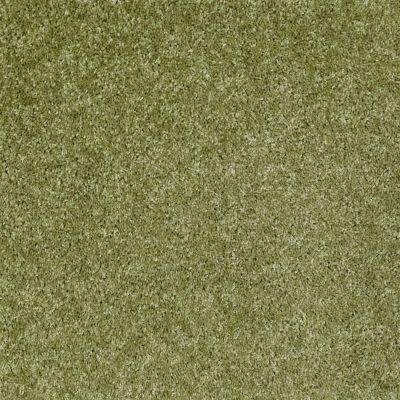 Shaw Floors Shaw Design Center Kentland 12′ Spring Valley 00300_5C599
