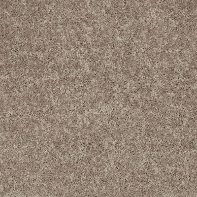 Shaw Floors Shaw Design Center Larimore 15′ River Slate 00720_5C607