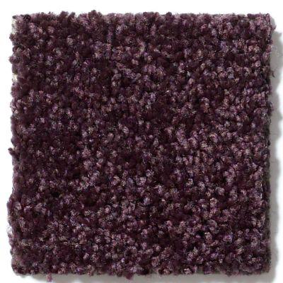Shaw Floors Shaw Design Center Royal Portrush II 12′ Royal Purple 00902_5C612