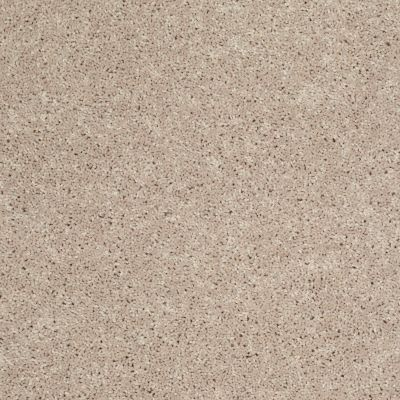 Shaw Floors Shaw Design Center Royal Portrush III 12′ Flax Seed 00103_5C613
